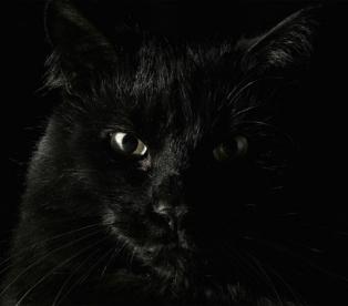 Психология цвета чёрный цвет
