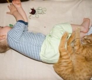 кошка спит в ногах у ребенка