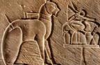Культ животных в древних религиях