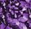 значение фиолетового цвета