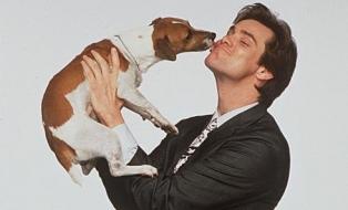 Почему собака лижет человека?